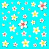 egzotycznych kwiatów Fotografia Royalty Free