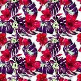 egzotycznych kwiatów Akwarela bezszwowy wzór Obrazy Royalty Free