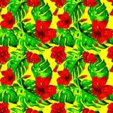 egzotycznych kwiatów Akwarela bezszwowy wzór Obrazy Stock