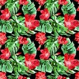egzotycznych kwiatów Akwarela bezszwowy wzór Obraz Royalty Free