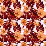 egzotycznych kwiatów Akwarela bezszwowy wzór Zdjęcie Stock
