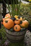 EH1_5634. Autumn decor. Pumpkins, squash, and gourds arranged in a pleasing fall outdoor display on top of a old wine or whiskey barrel stock photography