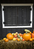 EH1_5672. Autumn decor. Pumpkins, squash, gourds, and hay against dark wooden barn board, arranged in a pleasing fall outdoor display stock image