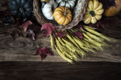 EH2_2067. A cornucopia or horn of plenty spilling vegetables out on to a worn wooden harvest table. Colours are lightly faded. Room for copy space royalty free stock photography