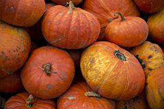 EH1_5683. Freshly picked large red Cinderella pumpkins in a pile. Horizontal orientation. A great background image stock photo