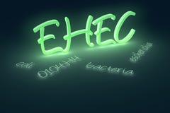 EHEC coli bacteria text Royalty Free Stock Image