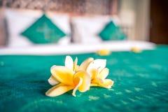 Eheliches Bett innerhalb des Hotelzimmers Bett verziert mit tropischen Blumen vor Gastankunft lizenzfreies stockfoto