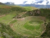 Ehemaliges peruanisches Korngewächshaus lizenzfreies stockbild