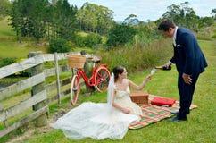 Ehemann und Frau an ihrem Hochzeitstag Lizenzfreies Stockfoto