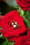 Eheringe auf Blumenstrauß der roten Rosen Stockfotografie