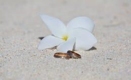 Eheringe mit weißer Blume Stockfotos