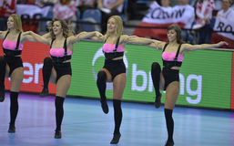 EHF EURO 2016 France Norway Royalty Free Stock Photo
