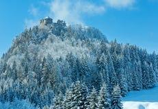 Ehrenberg城堡冬天视图(奥地利,巴伐利亚) 免版税库存图片