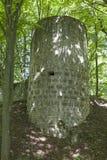 Ehrenfels城堡废墟在上普法尔茨行政区 免版税库存图片