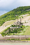 Ehrenfels Castle Royalty Free Stock Image