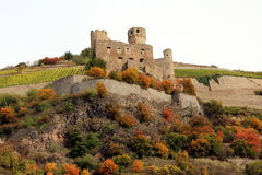 Ehrenfels Castle Royalty Free Stock Images