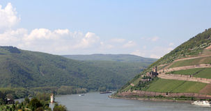 Ehrenfels Castle and Mouse Tower Royalty Free Stock Photo