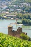 Ehrenfels Castle near Rudesheim am Rhein, Germany Stock Image