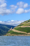 Ehrenfels castle in the vineyards Stock Photography