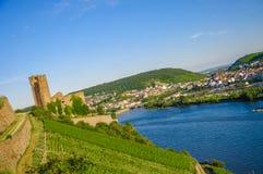 Ehrenfels slott, småstad Ehrenfels på Rhine River nära Ruedesheim och Bingen f.m. Rhein, Hessen, Tyskland royaltyfria foton