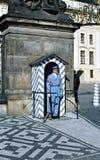 Ehrenwache am Beitrag nahe dem Präsidentenpalast im Prag lizenzfreie stockfotos