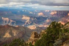 Ehrfürchtige Landschaft von Grand Canyon mit dem Colorado sichtbar während der Dämmerung Stockfotos