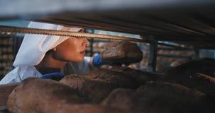 Ehrfürchtiger Frauenbäcker in einer Backwarenindustrieküche eines industriellen Regals ein neues gebackenes Brot und ein Riechen  stock video