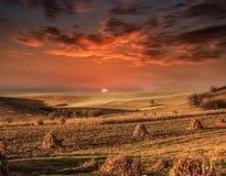 Ehrfürchtiger Sonnenuntergang auf den Feldern Stockbild