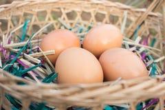 Ei auf dem Korb Stockbild