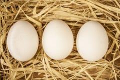 Ei auf Heu Lizenzfreies Stockfoto