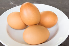 Ei auf Teller Stockfoto