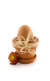 Ei in bloempot met boog Royalty-vrije Stock Foto