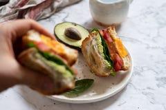Ei in een gatensandwich met avocado, spinazie en tomaat stock afbeeldingen
