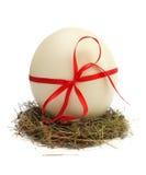Ei in een nest Royalty-vrije Stock Afbeelding