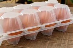 Ei in einem Behälter Stockbild