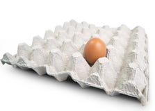 Ei in einem Karton ist auf weißem Hintergrund Stockbilder
