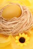 Ei in einem Nest stockfotos