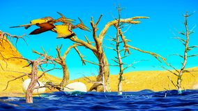 Ei en pterodactylus het 3d teruggeven Stock Afbeelding