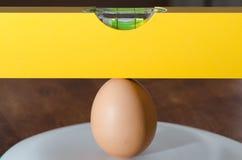 Ei en waterpas Stock Afbeeldingen