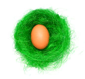 Ei im grünen Nest Lizenzfreie Stockfotografie