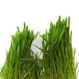 Ei im Gras Stockfoto