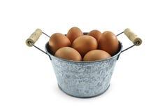 Ei im Minieimer auf weißem Hintergrund Stockfotografie