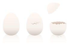Ei-intakte aufgebrochene Eierschale lizenzfreie abbildung