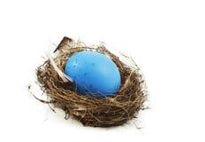 Ei ist in einem Nest Stockfotografie