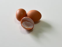 Ei mit der Eierschale Lizenzfreies Stockbild