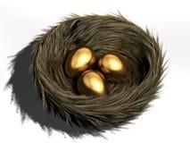 Ei in nest Royalty-vrije Stock Foto