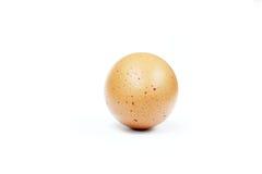 Ei op witte achtergrond wordt geïsoleerd die Royalty-vrije Stock Fotografie