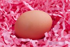 Ei in roze spaanders Royalty-vrije Stock Fotografie