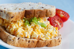 Ei-Salat-Sandwich Stockfotografie
