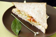 Ei-Sandwich lizenzfreie stockbilder